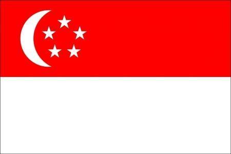 注册新加坡公司费用明细表